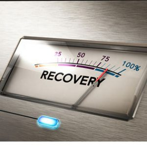 Crises recovery